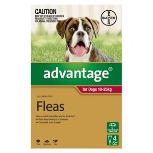 Advantage For Dogs 10-25kg Pkt 4