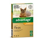 Advantage For Kittens and Sml Cats Up to 4 Kg Pkt 6