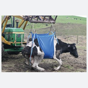 Cow Lifters- Daisy Lifter Mk2 Standard
