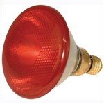 Heat Lamp Infrared Kerbl Red 100w Shoof
