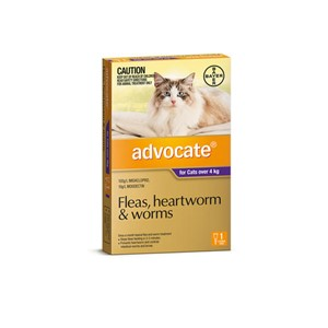 Advocate for Cats Over 4kg Single Pack