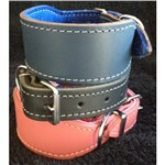 Greyhound Leather Collar LG01 50cm All Colours