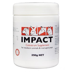 Impact Colostrum Supplement 250G