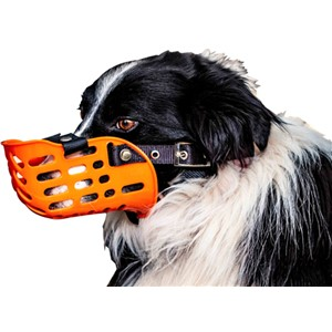 Plastic Working Dog Muzzle Agboss