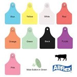 Allflex Female Tag